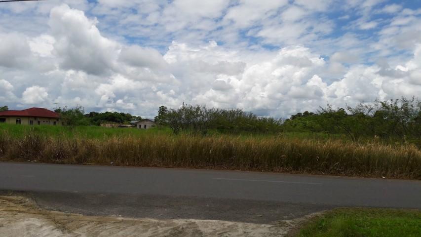 Foto1 (Small)